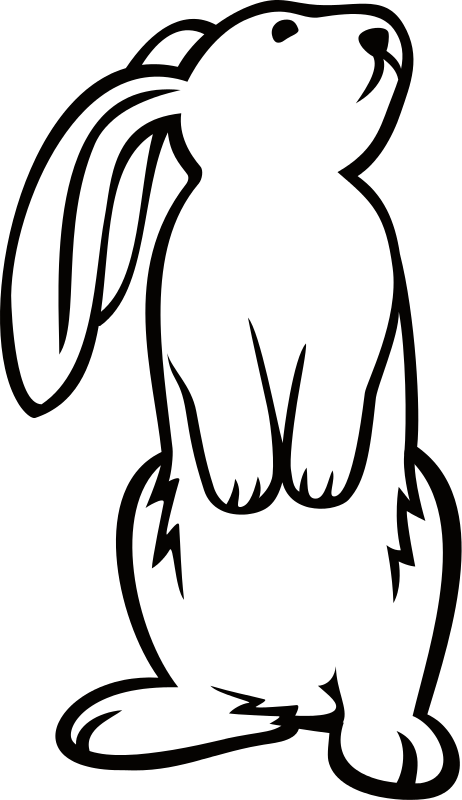 K_4243\_rabbit.png